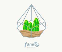 Una simpatica e affiatata famiglia di cacti.